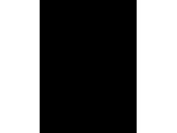 Dakar - nálepka